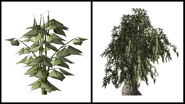 Images of plants from the video game.