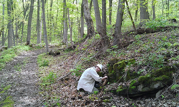 A woman in a forest crouches down to closely examine a rocky outcrop.