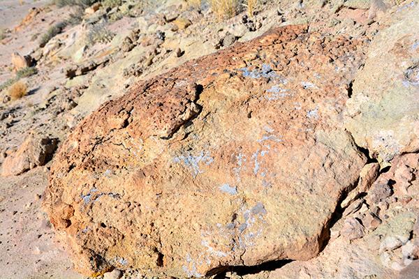 A boulder with lichen.