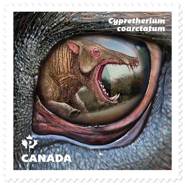 The stamp featuring Cypretherium coarctatum.