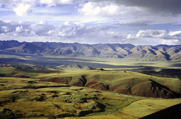 Photo of a modern steppe environment in Russia.