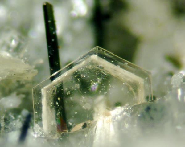 A mineral specimen.