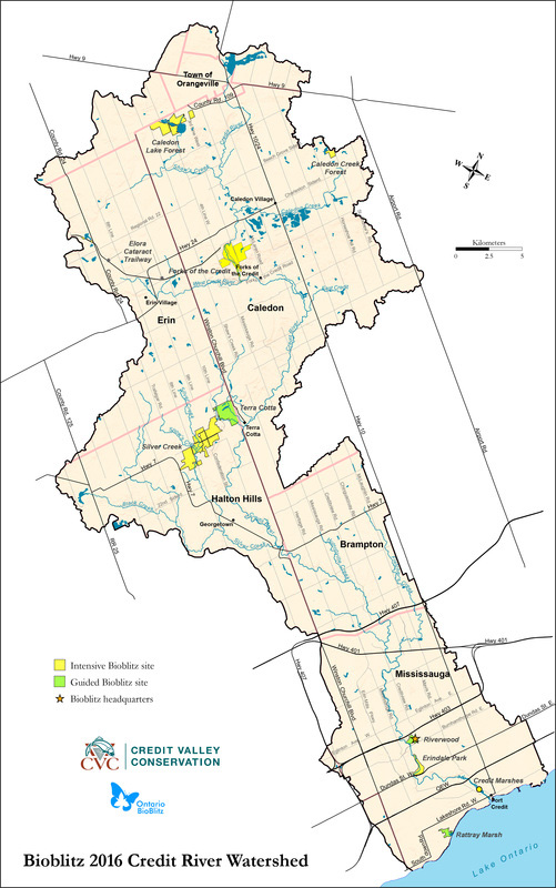 A map of the Credit River Watershed.