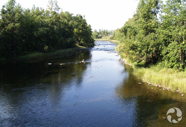A view of the river.