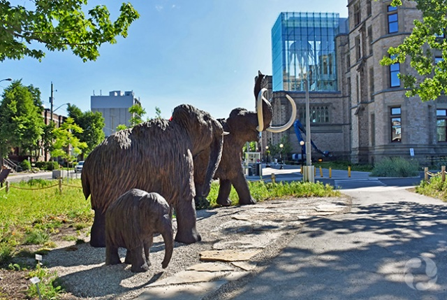 Three woolly mammoth sculptures on the museum's grounds.
