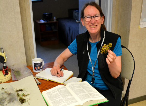 Lyyn Gillespie holds a plant she collected in one hand, while leaning on a table with documents on it.