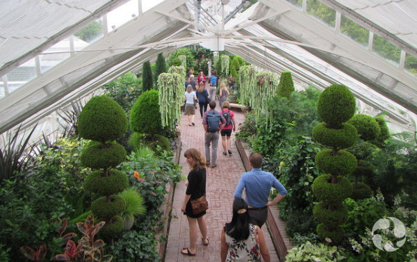 People walk between botanical displays.
