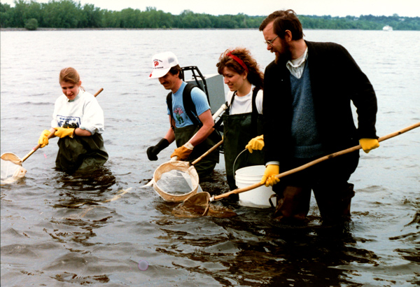 People standing in the river holding nets