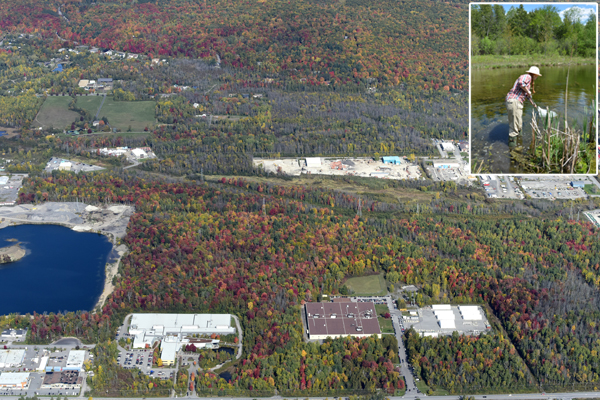 Aerial view of the museum's research and collection facility. Inset: a woman standing in the pond.