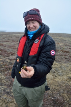 A researcher standing on the tundra and holding a plant specimen