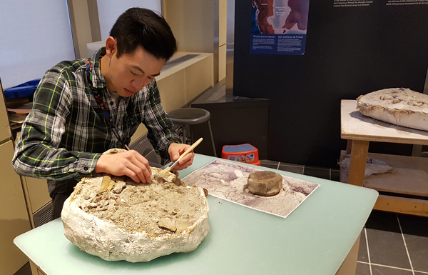 A man, seated at a work table, cleans a fossil specimen.