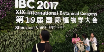 "A large wall covered in plants displays the name of a conference: ""IBC 2017 XIX International Botanical Congress"""