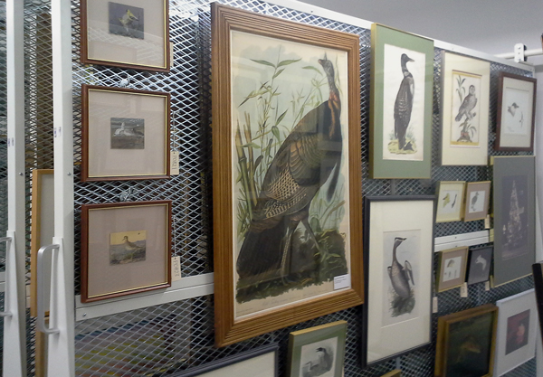 Framed paintings and photographs hanging on a wall.