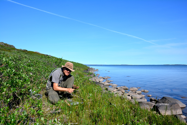 A scientist collects plants on the bank of a river.