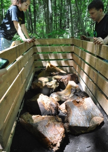 Whale pieces in a compost bin