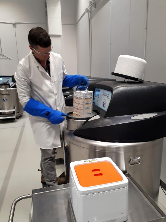 Man in a lab coat and large blue gloves is removing a rectangular tray that has many boxes from a large silver and black cryogenic freezer. There is mist coming out of the freezer. In the background you can see there are several more large silver and black freezers.