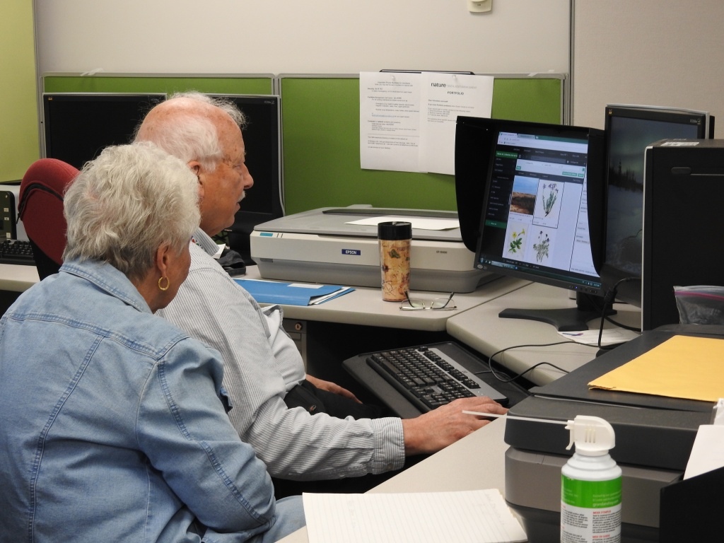 Two elderly people sitting at a desk in front of a computer working on an open database of information.