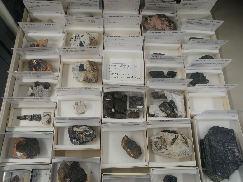Cabinet drawer containing twenty black specimens of columbite-tantalite, each in a separate cardboard box.