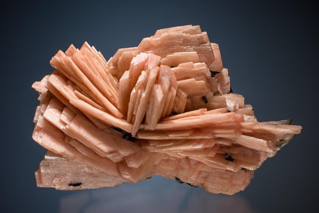 Sample of schizolite with radiating orange blades.