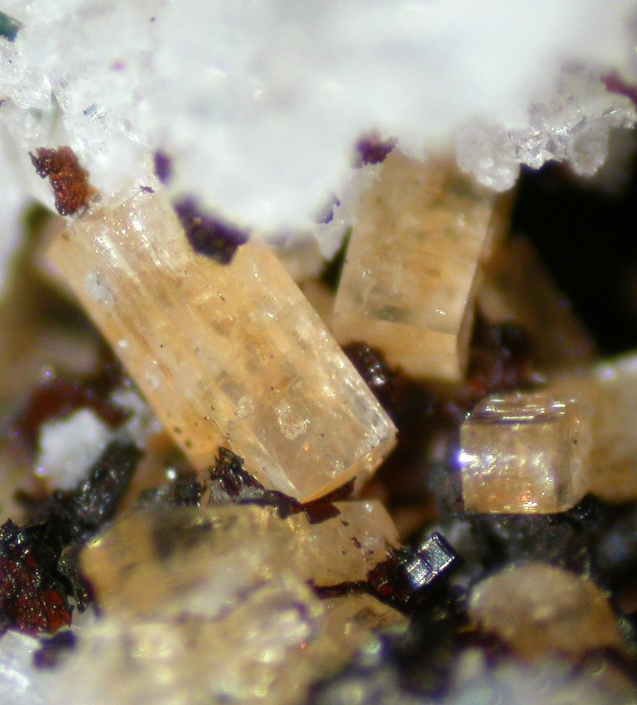 A macro photo of several prismatic, yellow crystals of haineaultite.