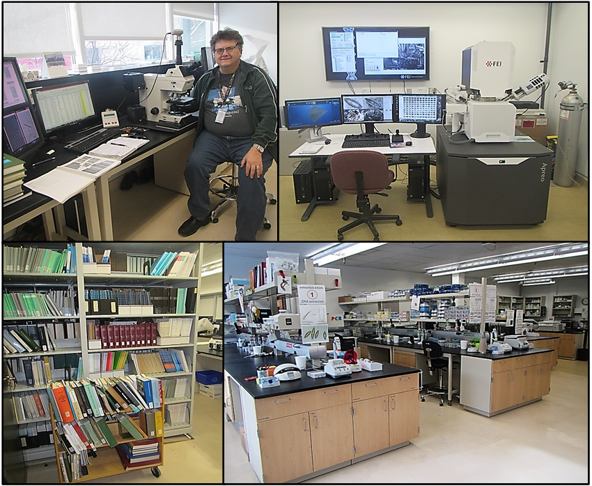 Four images. The top left shows the author sitting at a microscope with computer screens and diatom books open on a desk. The top right image shows a scanning electron microscope and several large computer screens. The bottom right shows a molecular biology laboratory with different types of equipment and supplies on the counters and shelves. The bottom left image shows a library shelf filled with diatom-related books.